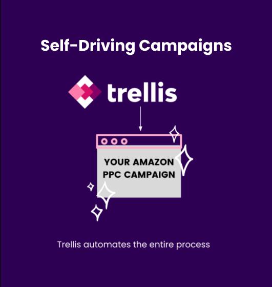 Trellis Self Driving Campaigns