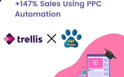 Case Study: +147% sales using PPC Automation