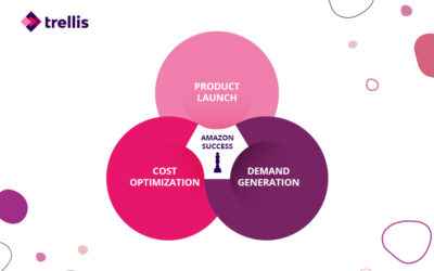 The Best Amazon PPC Strategy for Each Stage of the Seller Journey
